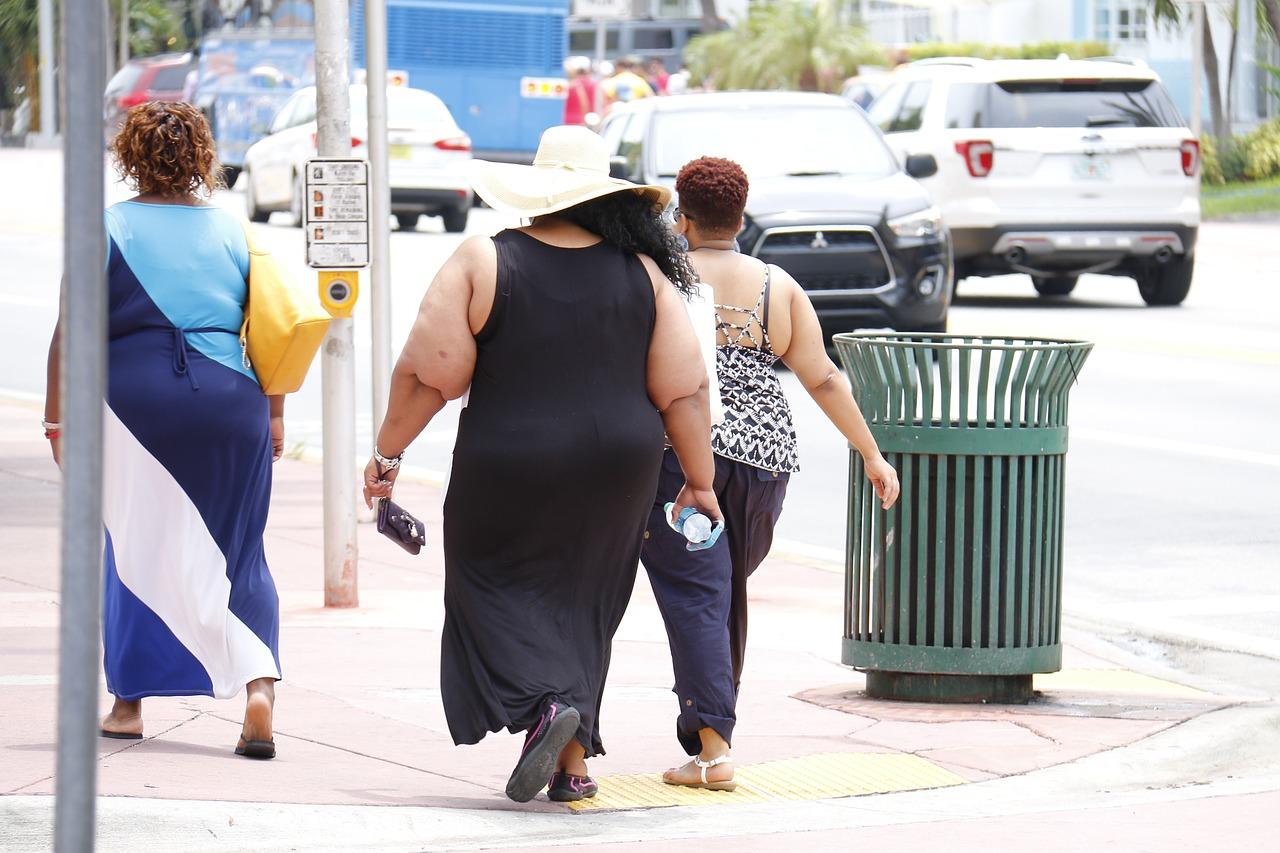 Tučné dámy