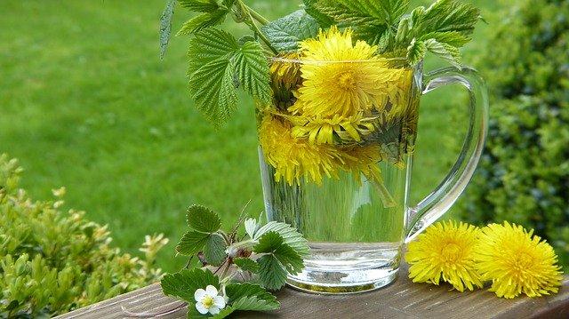 Hledejte recept na krásu v přírodní lékárně