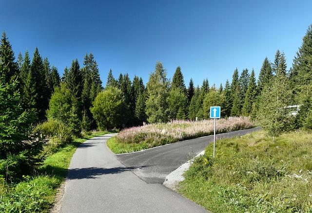 křižovatka u lesa